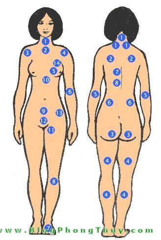not ruoi tren co the phu nu Ý nghĩa nốt ruồi trên thân thể phụ nữ (mặt sau)